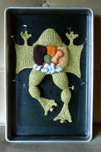 Вязаная препарированная лягушка